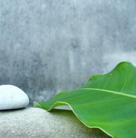 entspannungstherapie-stressmanagement